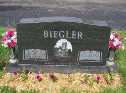 Glenn H Biegler
