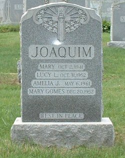 Lucy Louisa Joaquim
