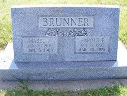 Harold P Brunner