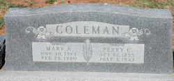 Mary Annie Elizabeth <i>Dieter</i> Coleman