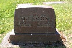 Clifford Curtis Anderson