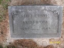 Eliza Ann Turner <i>Curtis</i> Anderson