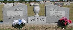 Amilee <i>Bass</i> Barnes