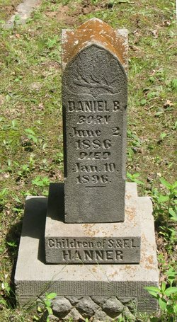 Daniel B Hanner