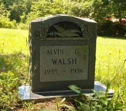 Alvin G Walsh