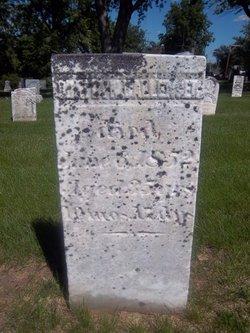 Oratia Nelson Horatio Ballenger