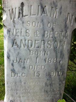 William N. Anderson