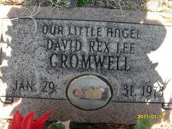 David Rex Lee Cromwell