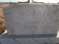 Carrie Ann Morris