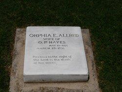 Orphia E <i>Allred</i> Hayes