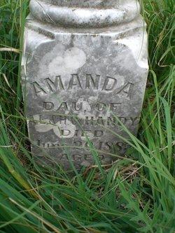 Amanda Handy