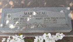 Joel Hills Martineau