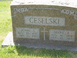 Mary Ann <i>Friday</i> Ceselski