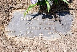 Delmas Demaster Carr