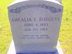 Amealia E Burgess