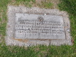 Allison R Allingham
