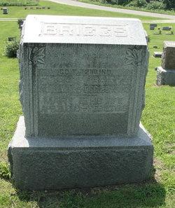 Mary Elizabeth <i>Crawford</i> Briggs