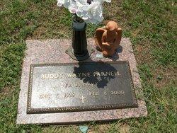 Buddy Wayne Parnell