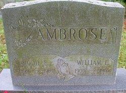 William Ellis Ambrose