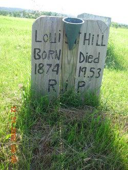 Louis T Hill