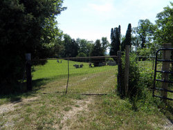 Oglesby Cemetery