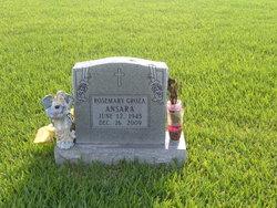 Rosemary <i>Groza</i> Ansara