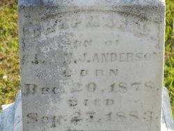 Chapman L. Anderson