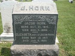 Elizabeth Horn