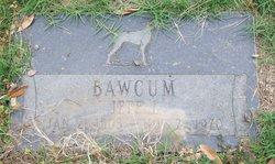 Jeff L Bawcum