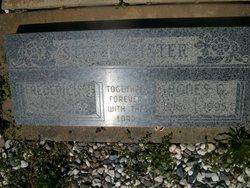 Agnes Gertrude <i>Lee</i> Stottmeister