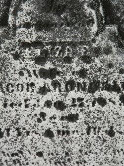 Elizae Aronhalt