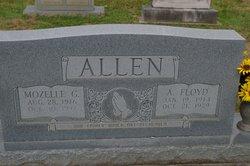Arthur Floyd Allen