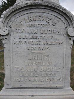 Annie Bodine