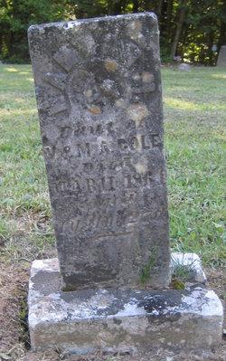 Hannah M. Cole