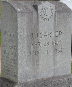 Mary Virginia <i>Granbury</i> Carter