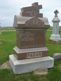Harold J Fagan