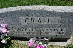 Cynthia Elizabeth Lizzie <i>Hollenback</i> Craig