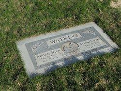 Arthur Vivian Watkins