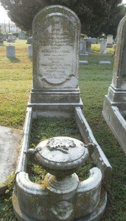 Rev Robert Henry Pattison