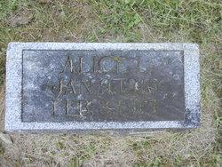 Alice Louise Wilson