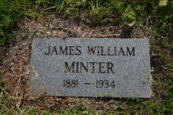 James William Minter
