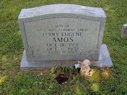 Terry Eugene Amos