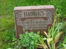 Elizabeth M Barnes