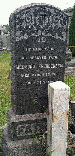 Siegmund Freudenberg