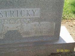 Mary Bestricky