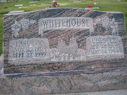 Chester Whitehouse