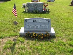 Harvey C Bush, Jr