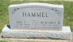 Dale T. Hammel