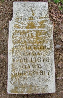 Mary Belle <i>Blake</i> Herring