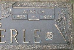 Aurelia <i>Pearsol</i> Weckerle